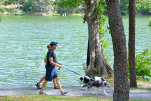 Image Credit: Virginia State Parks