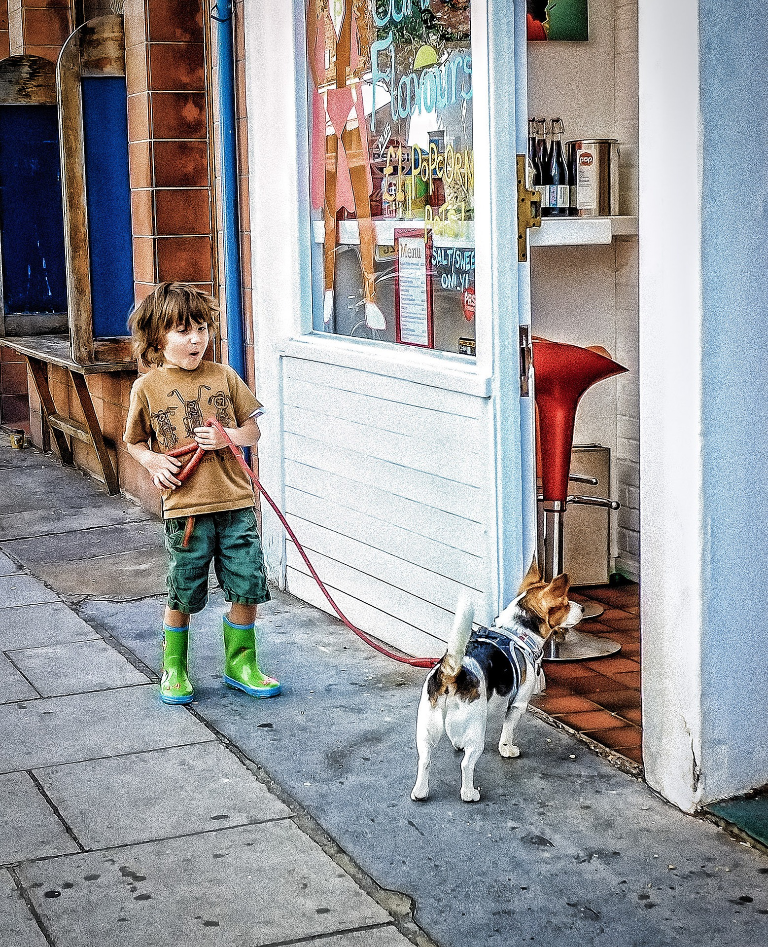 The Only List of Dog-Friendly Retail Chains in the United