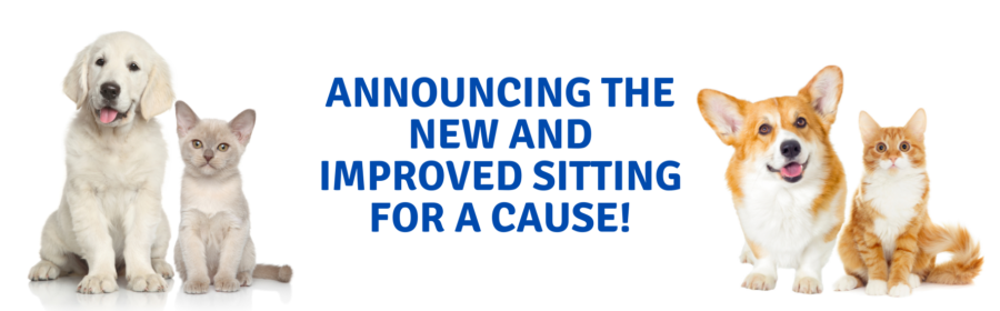Sitting for a Cause
