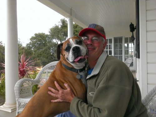 5 Star Housesitters and Pet Lovers! profile picture
